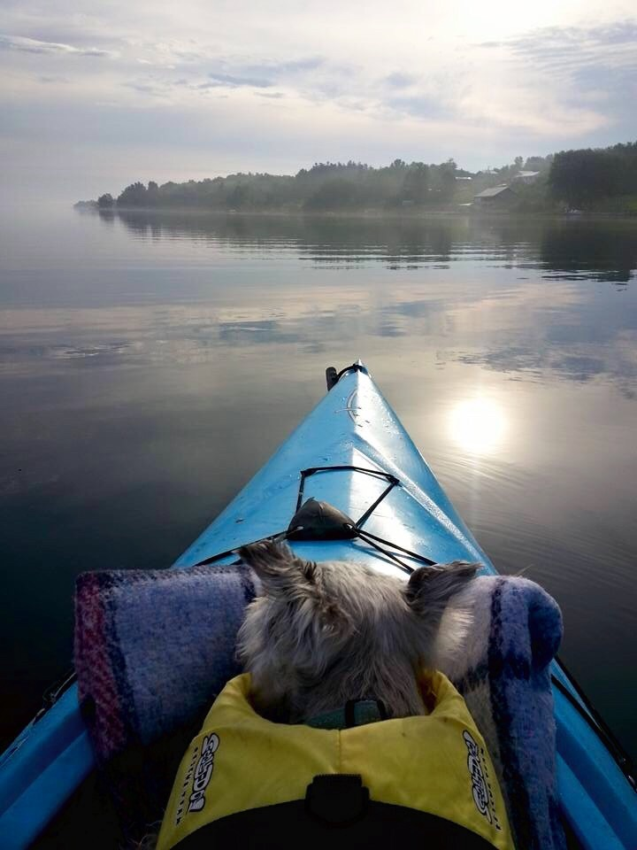 Pepper has been kayaking on the SLR for nearly a decade!   Steve Krauz, Photographer